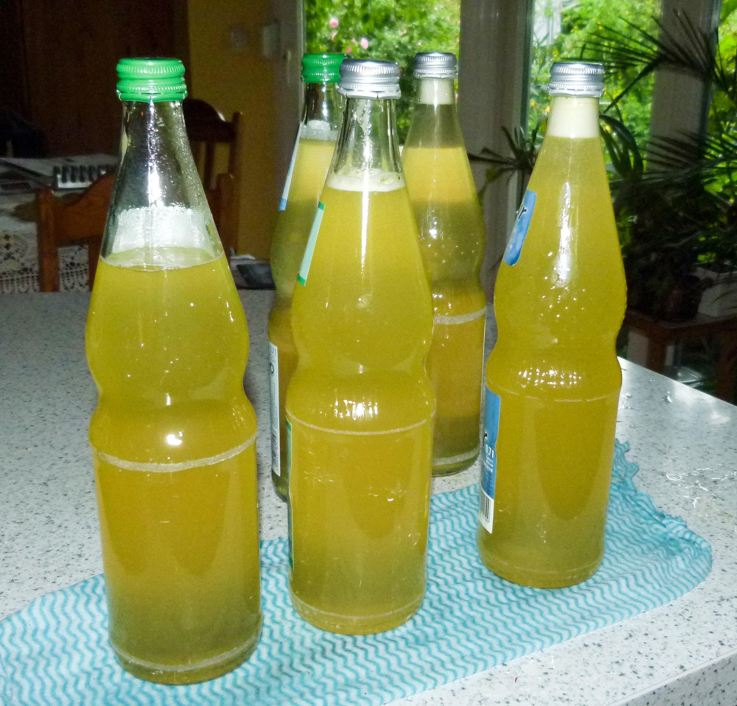 8. heiß in Flaschen geben und verschließen.